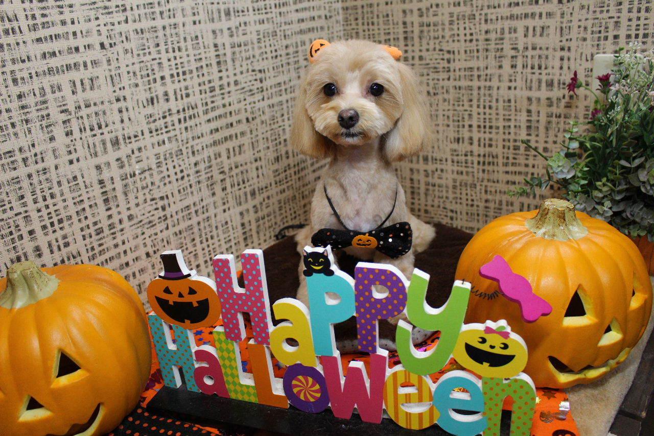 10月22日ご来店のお客様です!!_b0130018_21202833.jpg