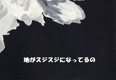 f0251618_19442095.jpg
