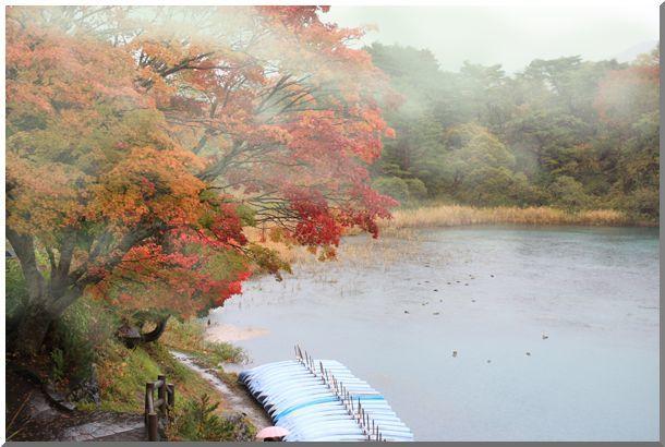 秋色(福島県)_d0123528_15433181.jpg