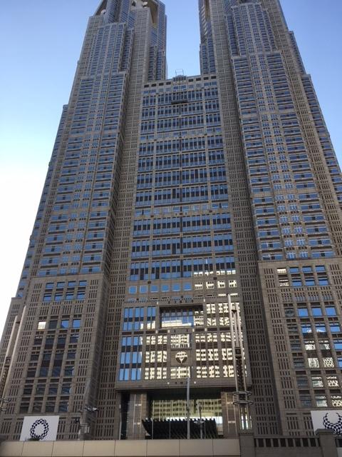 都庁で三崎まぐろのネギトロ丼_a0359239_16340461.jpg
