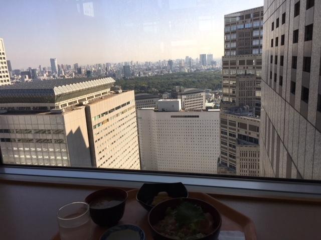 都庁で三崎まぐろのネギトロ丼_a0359239_16372200.jpg