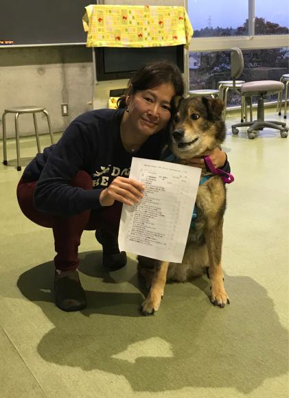 GCTに合格しました。念願のプラチナ犬_a0126743_23240347.jpg