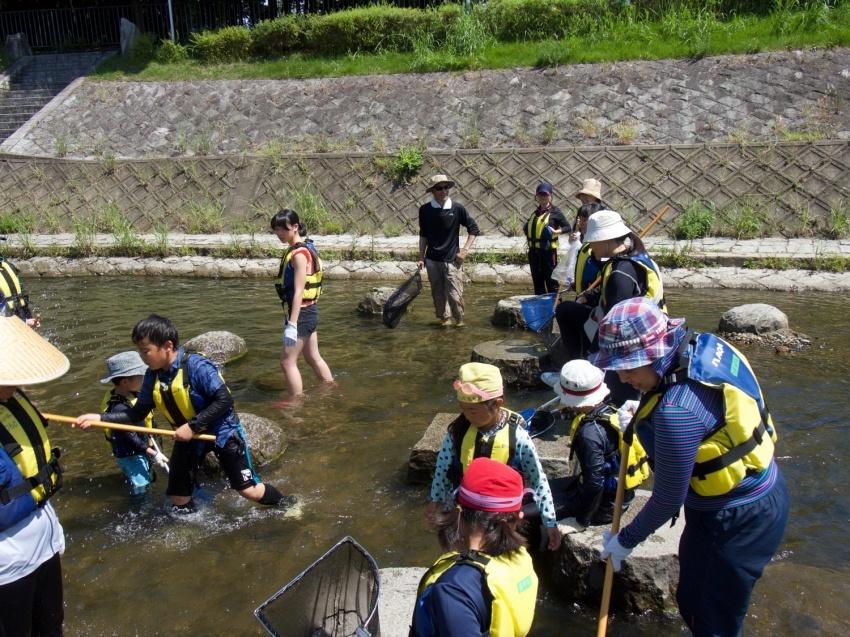 山科川ガサガサ探検隊_e0008880_12295365.jpg