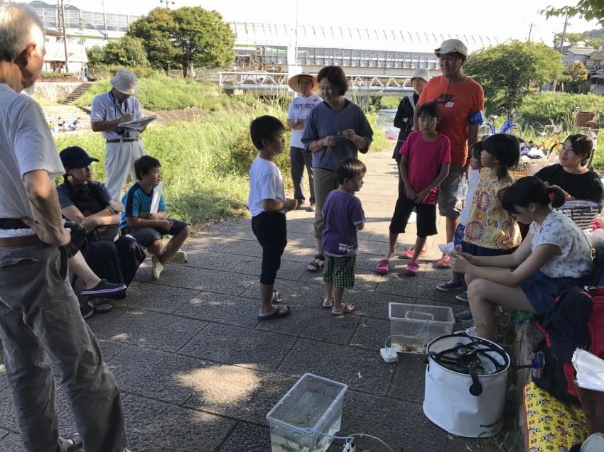 山科川ガサガサ探検隊_e0008880_12435741.jpg