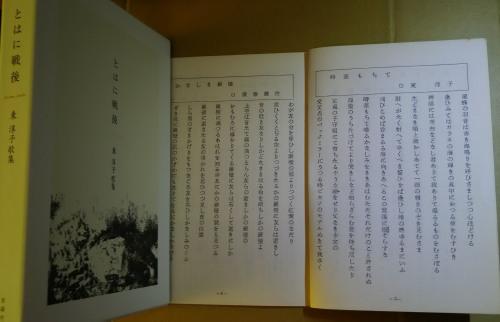 『とはに戦後』を読みつつ「日本青年」旧号を思う_c0216213_15184848.jpg