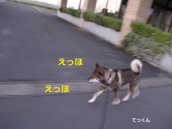 f0143123_14035068.jpg