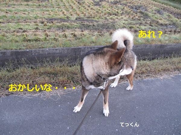f0143123_14040720.jpg