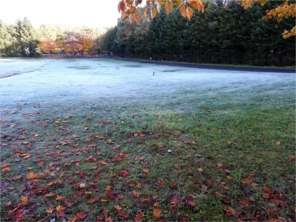 週末の天気と気温(10月4週目)_b0174425_08410090.jpg