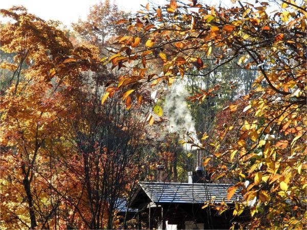 週末の天気と気温(10月4週目)_b0174425_09203044.jpg