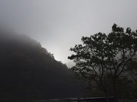 朝靄の先に_a0014840_2338347.jpg