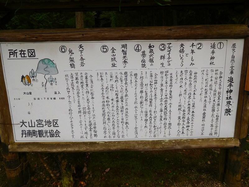 天然記念物「千年モミの木」(丹波追手神社)20171018_e0237645_23312445.jpg