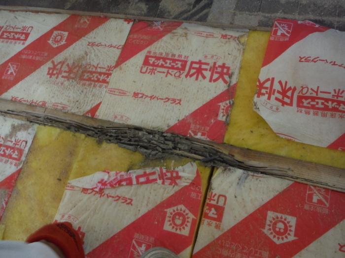 リビング床工事 ~ シロアリ被害が見つかりました。_d0165368_07054357.jpg