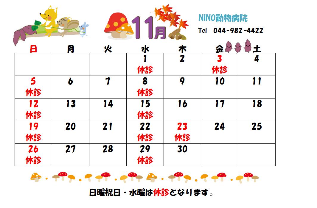 11月の診療日のお知らせ☆_e0288670_15242823.png