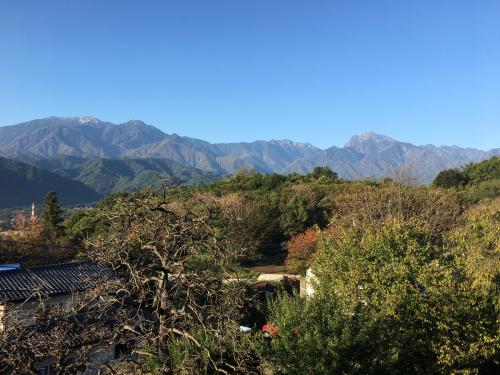10月27日、日野春の紅葉🍁は、まだ稲刈りが終わって、まだまだ?_d0338282_07362163.jpg