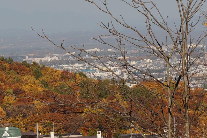 西野西公園散策_d0162994_08404135.jpg