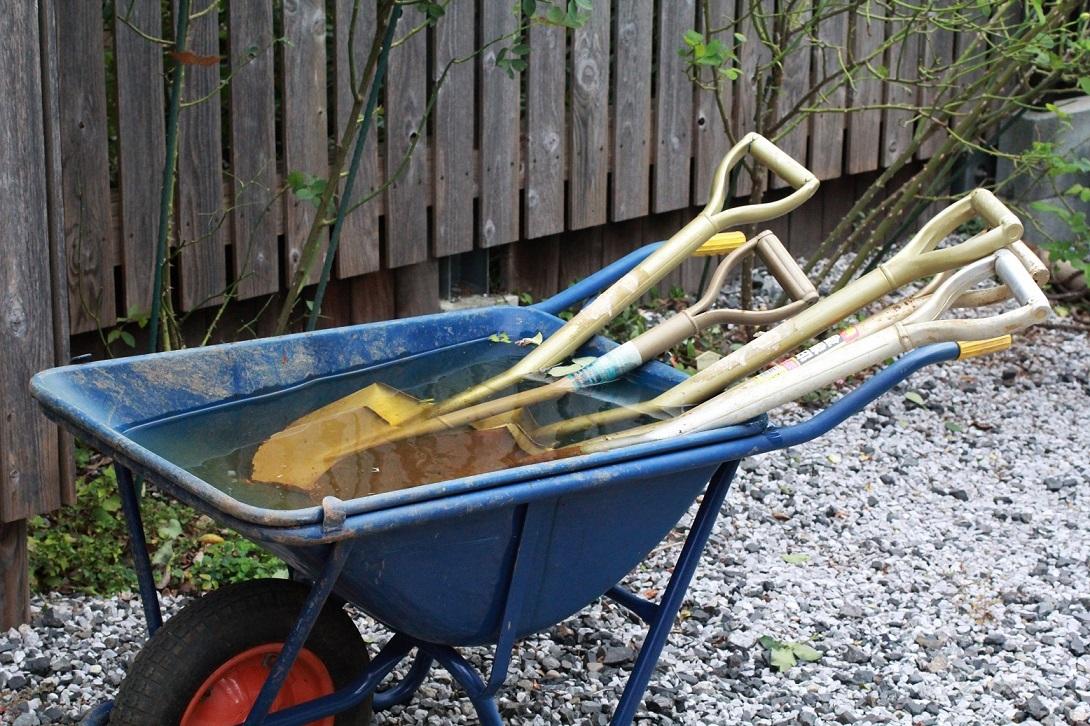 庭の草取りを始める_a0107574_23063019.jpg