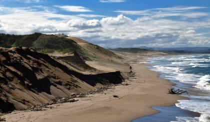 鳥取砂丘海岸も大量のゴミと年々削られていく砂浜.......なかなか見苦しい....._b0194185_22202822.jpg