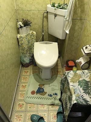 トイレ 改修工事_b0185592_14384399.jpg