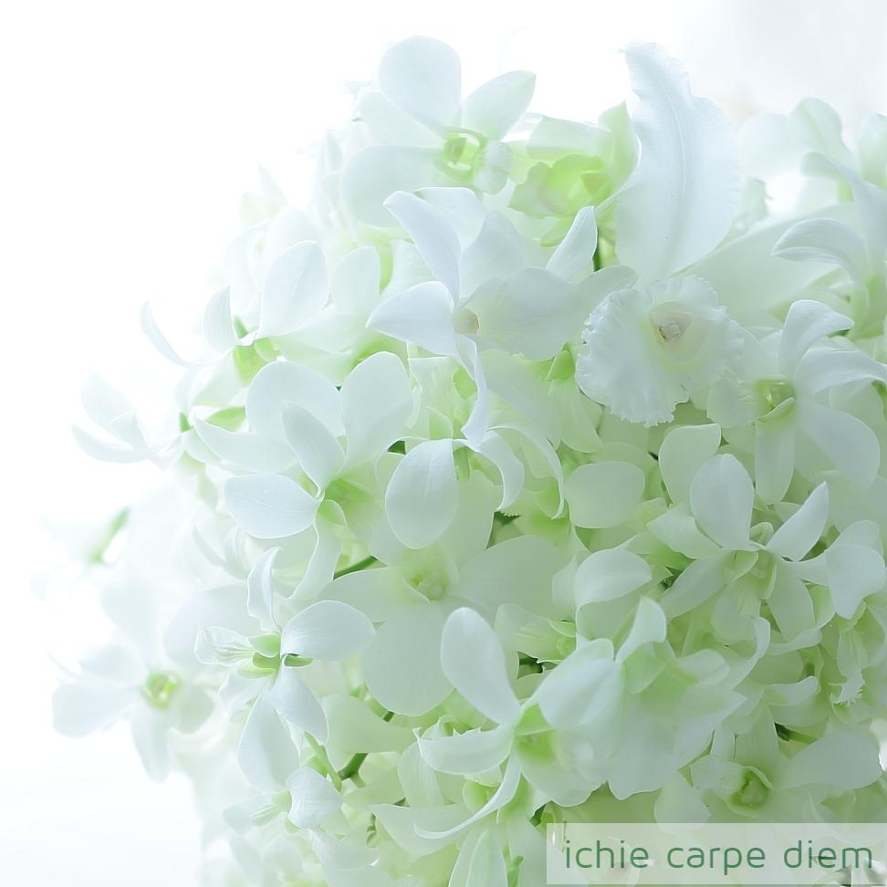キャスケードブーケ 帝国ホテルさまへ 蘭だけで 純白のブーケ_a0042928_10584860.jpg