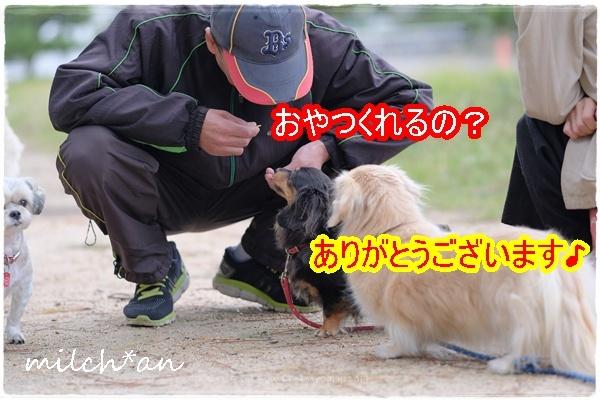 b0115642_21443766.jpg