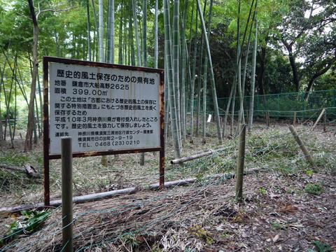 アズマネザサ刈り完了!10・28神奈川県所有竹林整備④_c0014967_11463480.jpg