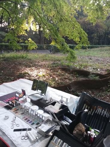 朝からはとある京都の森にてプロフィール写真_d0241780_19045558.jpg