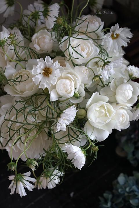 白いコスモス♡_f0127281_14223752.jpg