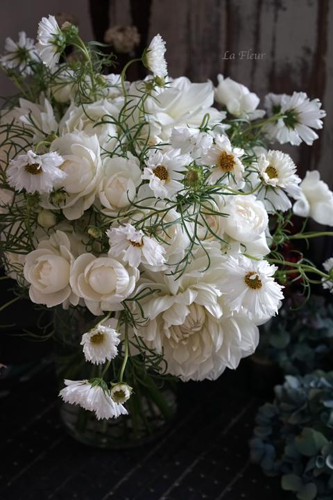 白いコスモス♡_f0127281_14300003.jpg