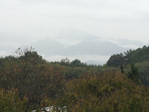 台風💨が近づいてきます。でも微かに山⛰が見えてます。_d0338282_15465347.jpg