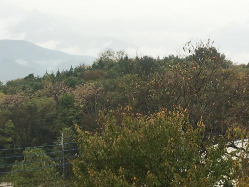 台風💨が近づいてきます。でも微かに山⛰が見えてます。_d0338282_15470417.jpg
