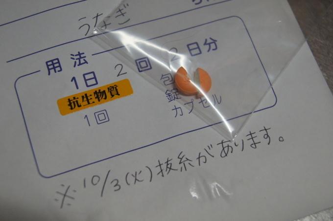 f0195891_15313652.jpg