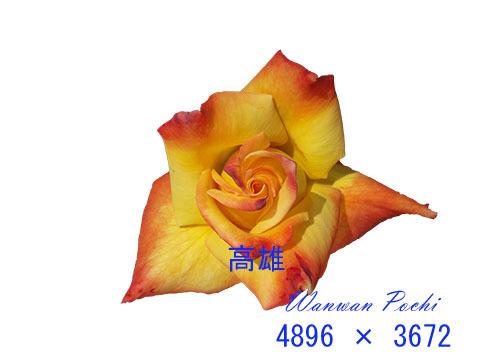 e0376329_08574472.jpg