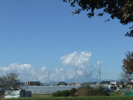 優しい台風...強いホークス_b0137932_14390548.jpg