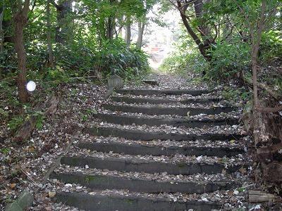 伏見稲荷神社_f0078286_15180325.jpg