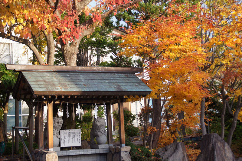 日照神社_d0162994_07314647.jpg