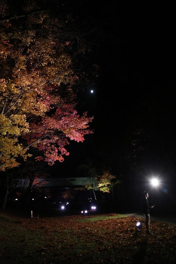 紅葉ライトアップ生中継_c0111229_19572605.jpg