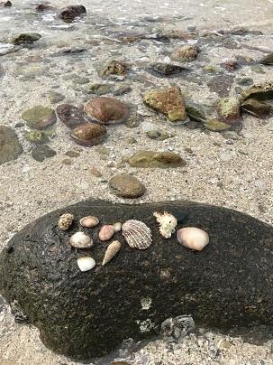 アメリカのCNNトラベルにも選ばれた、干潮時は歩いて渡れる西貢・橋頭洲☆A Boat Trip To Sharp Island in Sai Kung_f0371533_18260708.jpg