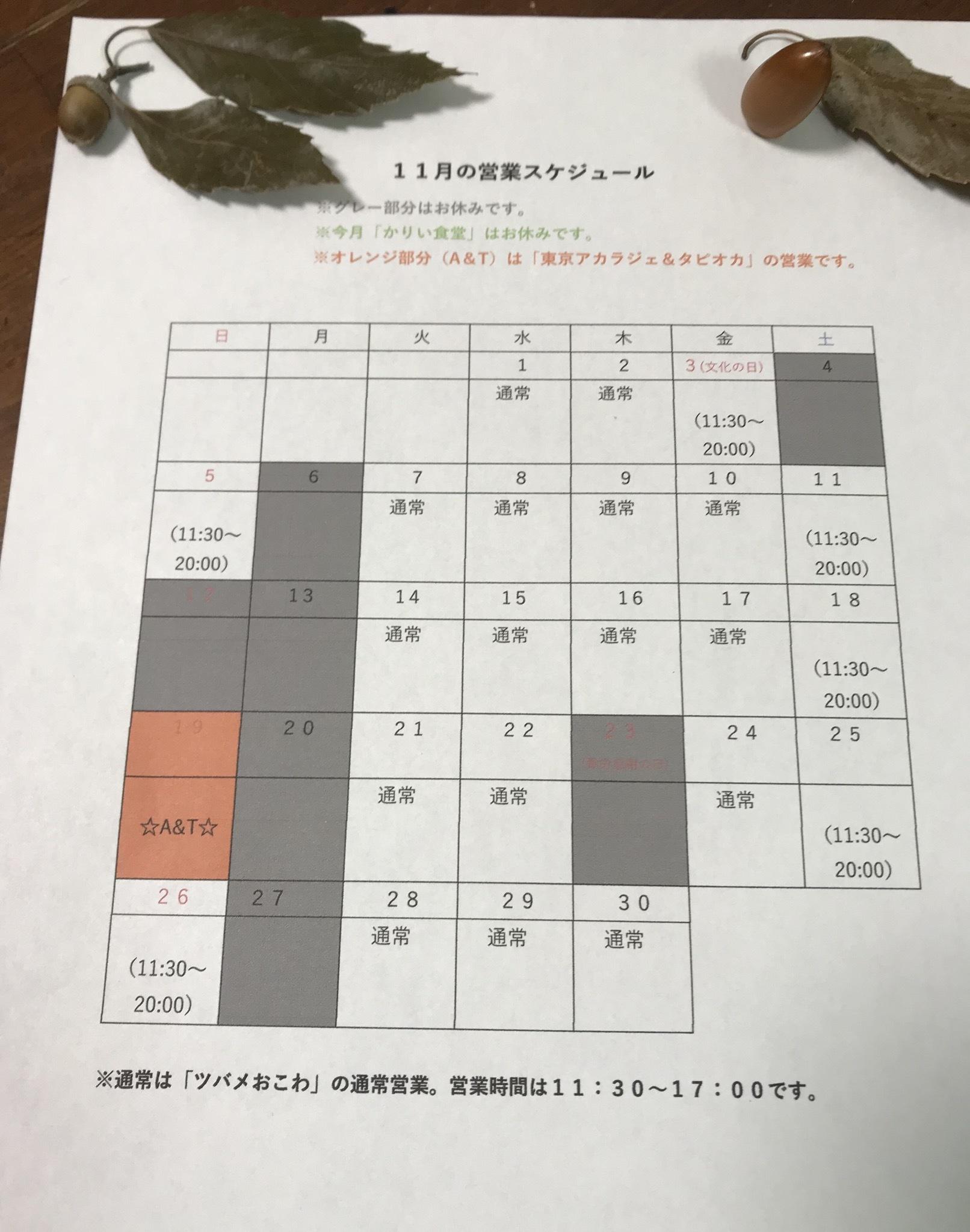 11月の営業カレンダー☆_b0290647_17143352.jpeg
