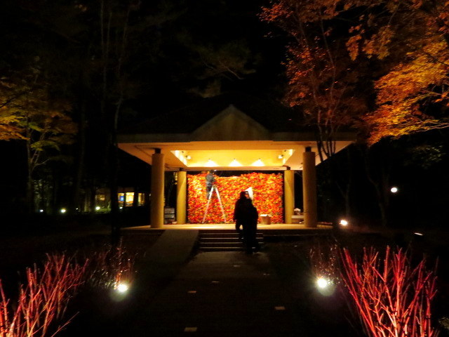 Art of Forest 2017 * 紅葉ライトアップ~ニコライ・バーグマン展示_f0236260_19373486.jpg