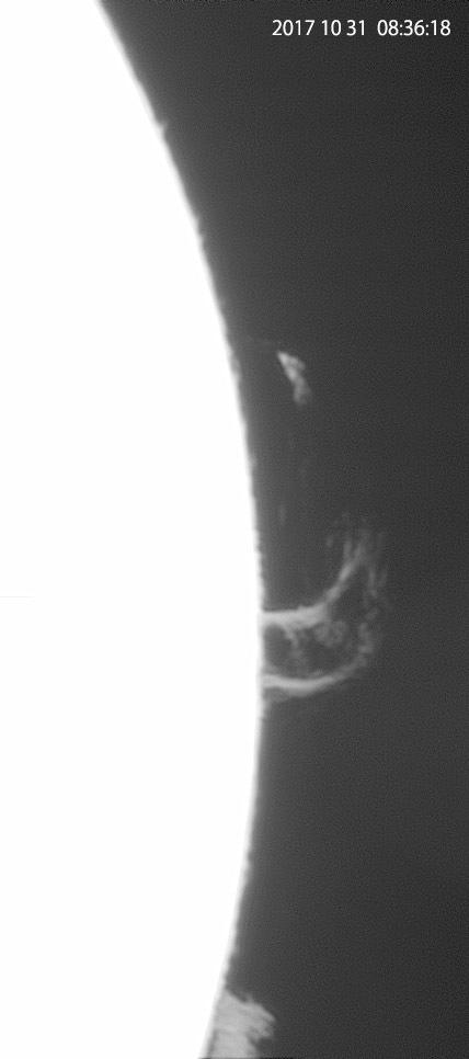 10月31日の太陽_e0174091_14444993.jpg