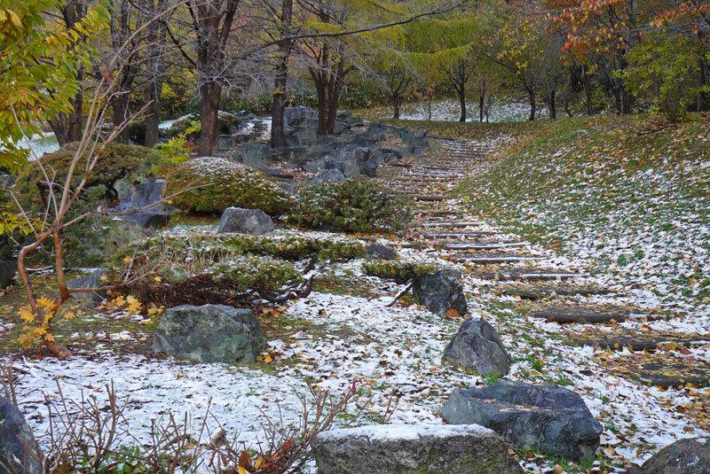 雪景色_d0162994_08434366.jpg