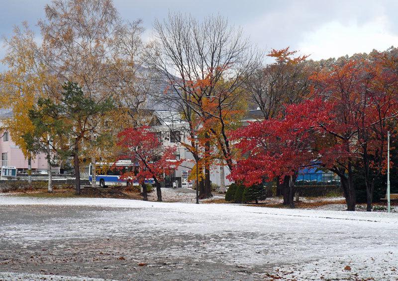 雪景色_d0162994_08440543.jpg