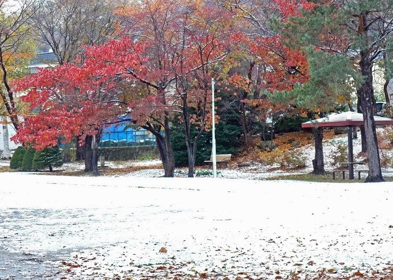 雪景色_d0162994_08443165.jpg