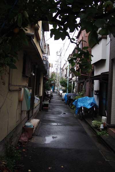 東京散歩(葛飾区四ツ木界隈)_b0103798_201911100.jpg
