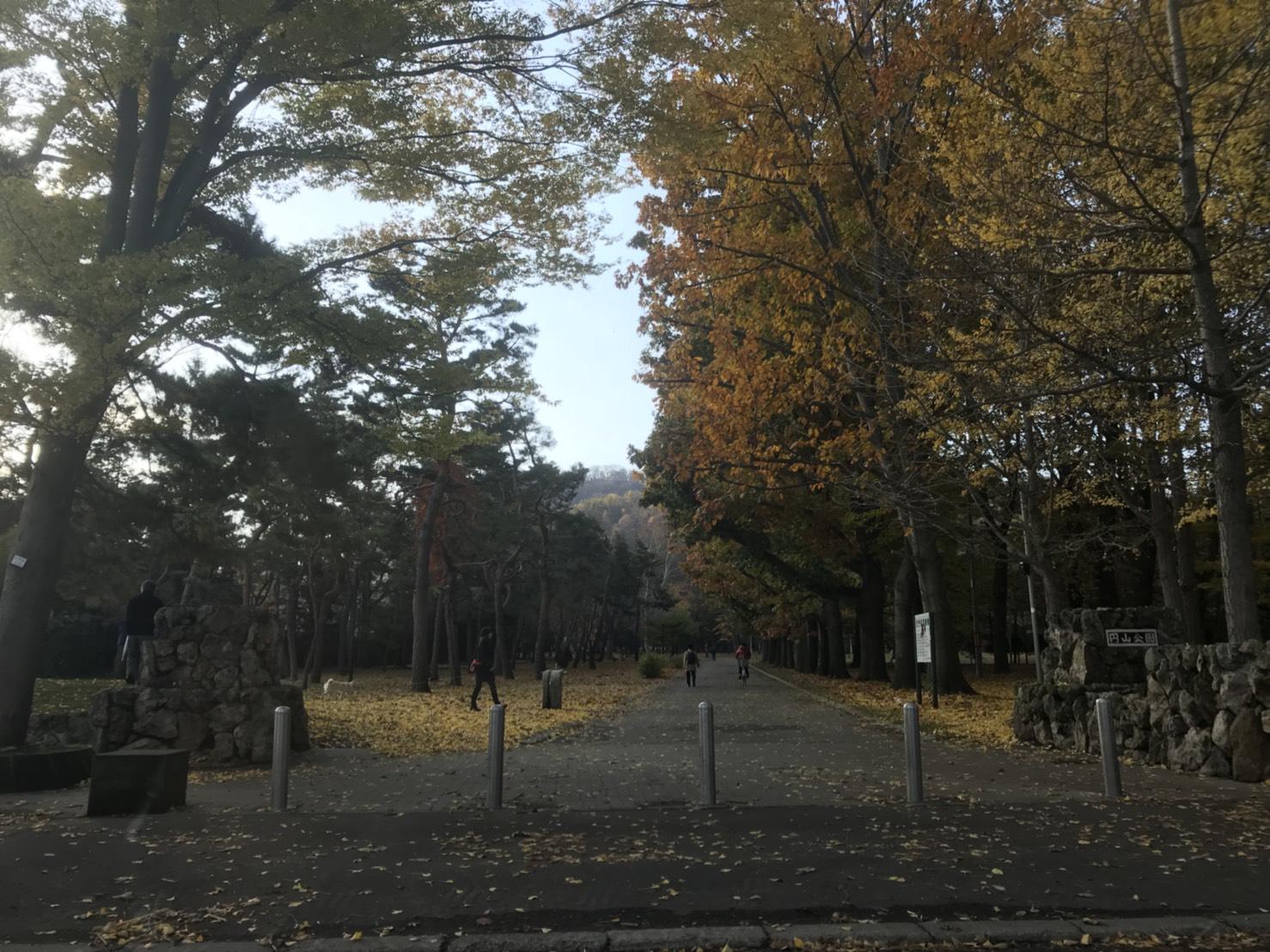 11月1日 ひとログWed(。・ω・。) 今年の冬は除雪車リース!!月々8万円から♬TOMMY本店_b0127002_16441734.jpg