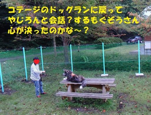 f0121712_15230209.jpg