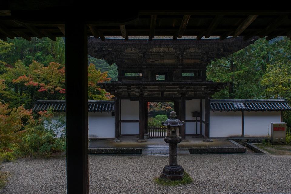 2017奈良紅葉~円成寺_e0363038_8531488.jpg