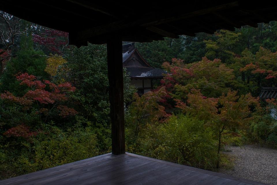 2017奈良紅葉~円成寺_e0363038_853910.jpg