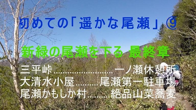 d0047881_13450724.jpg