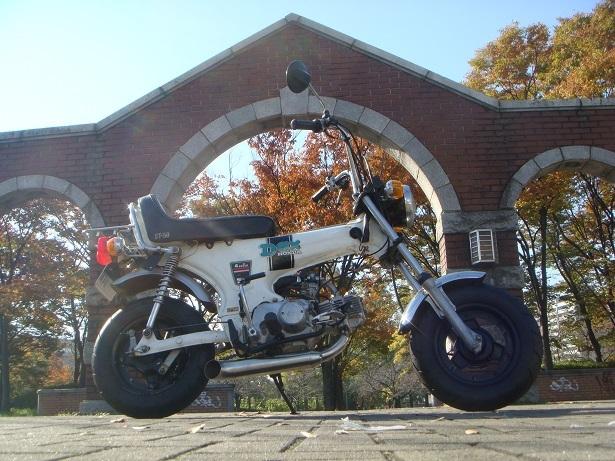 ST50M(アメリカンダックス) しまなみ海道用_c0153300_11153371.jpg
